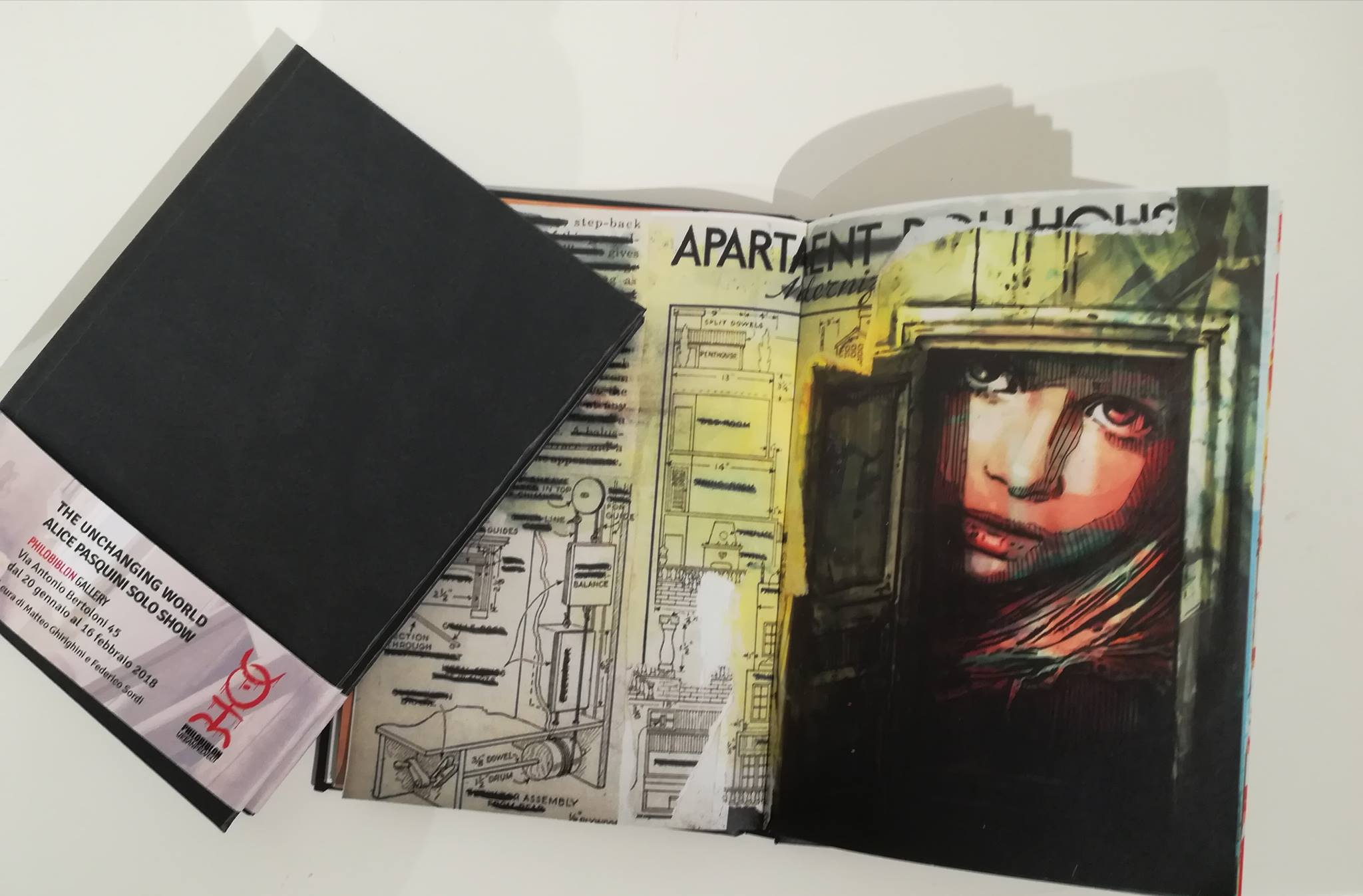 Book: Alice Pasquini, The Unchanging World